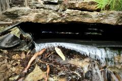 Tree-Root-Biofall-Waterfall-Lenexa-KS