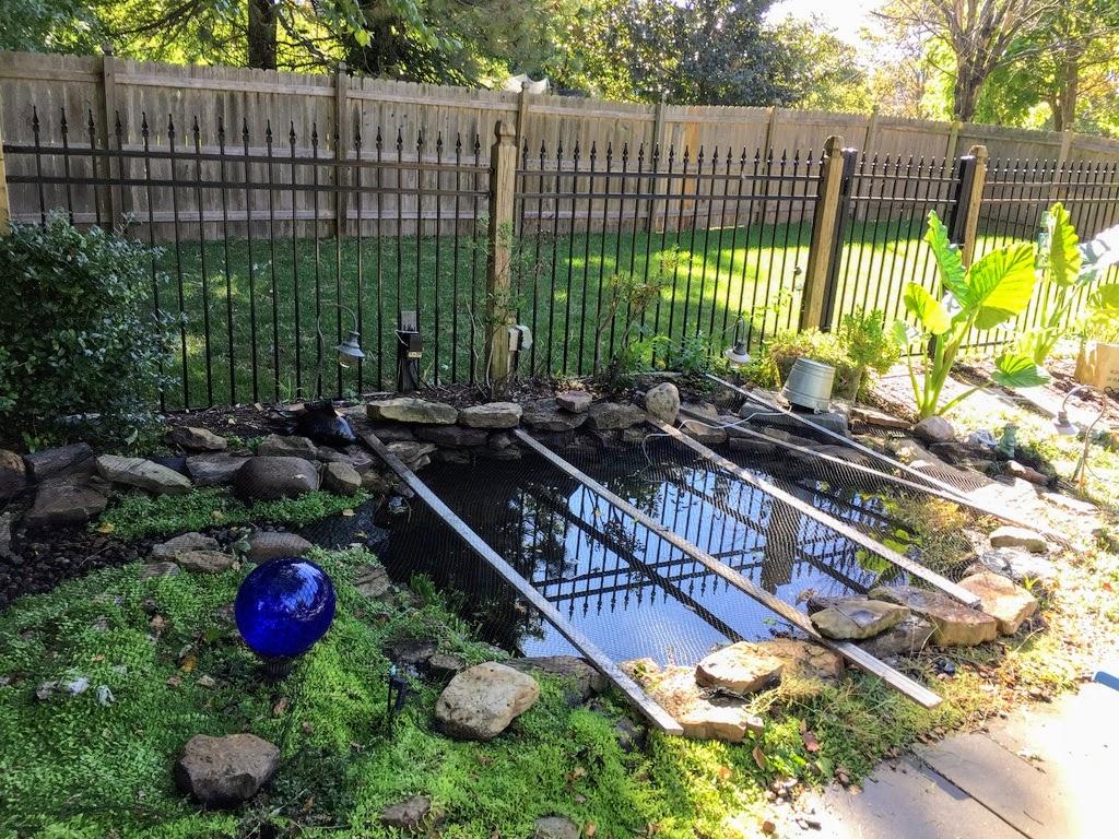 fall pond service