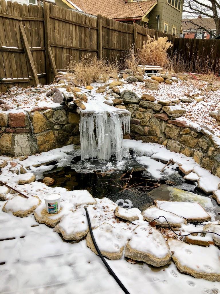 pond winter services